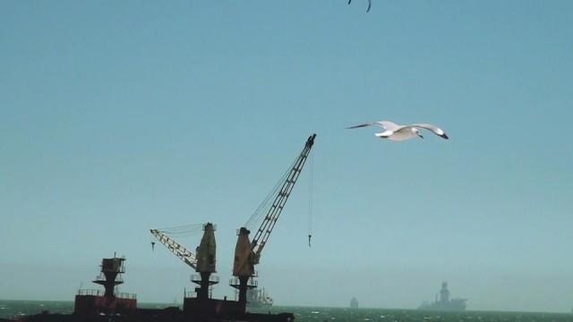 Nick Jacobsen crane jump 2011 Cape Town